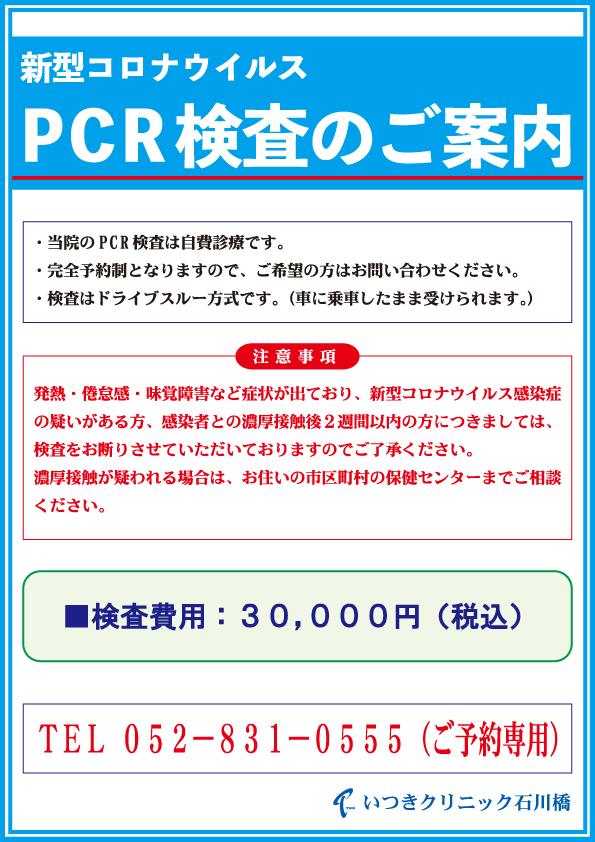自費 検査 名古屋 pcr
